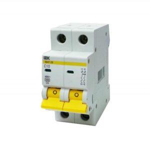 Автоматический выключатель двухполюсной IEK ВА47-29  C10